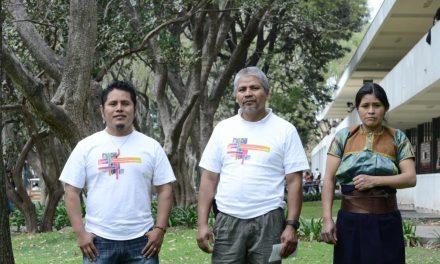Movimiento por los pueblos originarios