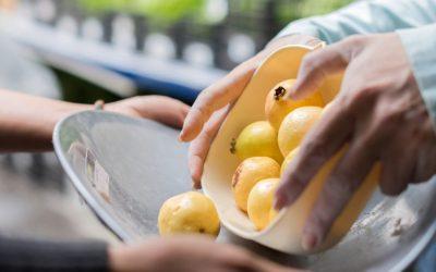 La Clínica Nutricia te pregunta ¿cómo eliges tus alimentos?