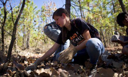 Educación humanista: aprender para servir