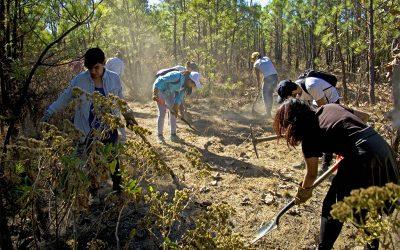 Restaurar y educar para conservar ecosistemas