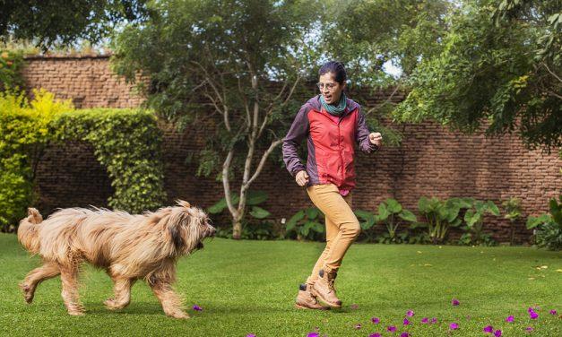 Una vida entre filósofos y perros
