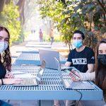 Universidad y convivencia